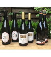 Spanischer Spargel Wein
