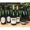 Spargel Wein aus Katalonien